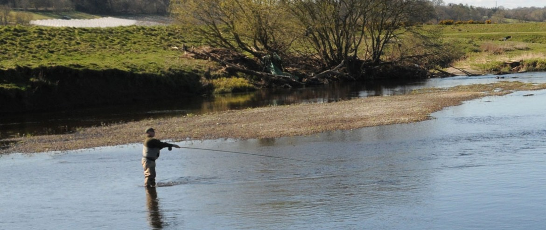 Coupar Grange Fishings - fishing in Perthshire